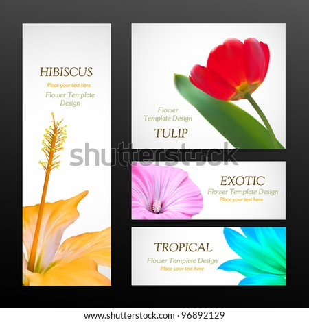 Flower brochure design backgrounds, vector templates of banners or business cards. Spring plant tulip and hibiscus