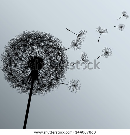 Flower dandelion black on gray background Vector illustration