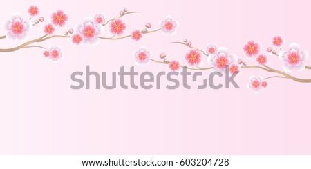 Flower design flower background branches of sakura isolated on flower design flower background branches of sakura isolated on light pink background apple mightylinksfo