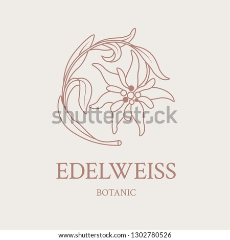 flower design of the logo with