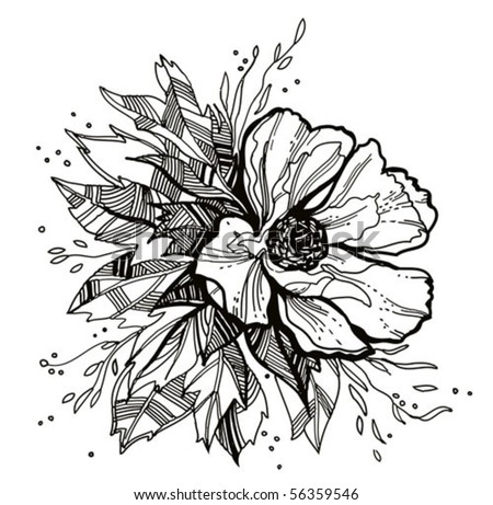 flower drawing   for vector