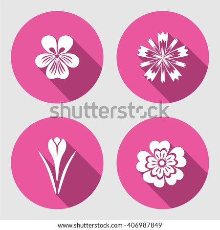flower icons set primula