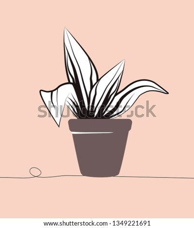 Flower in a pot. Vector linear drawing for postcard. Pink background - stylish trendy trendy illustration. Cozy evergreen plant.