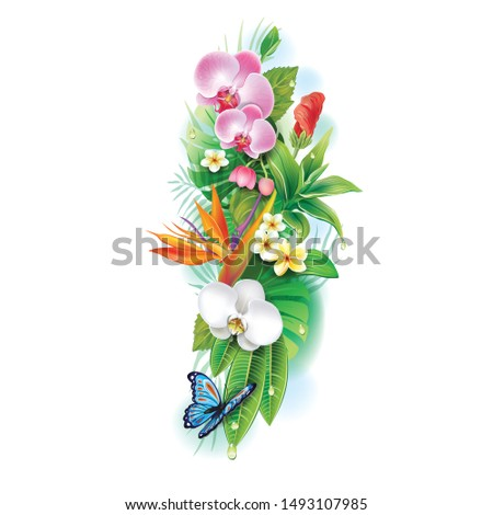 flower isolated on white background design  #1493107985