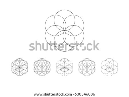 flower life vector