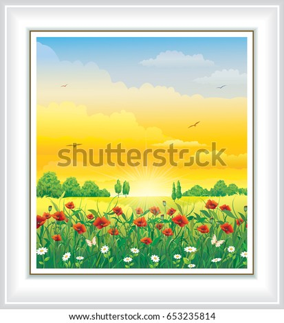 flower meadow with poppies and