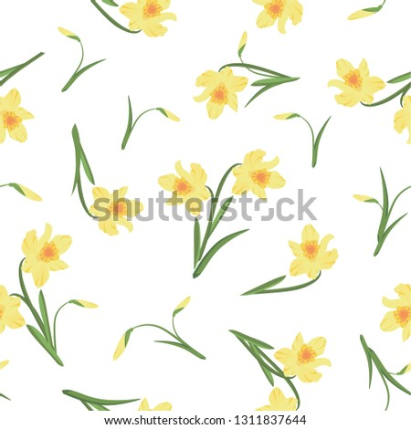 flower narcissus background of