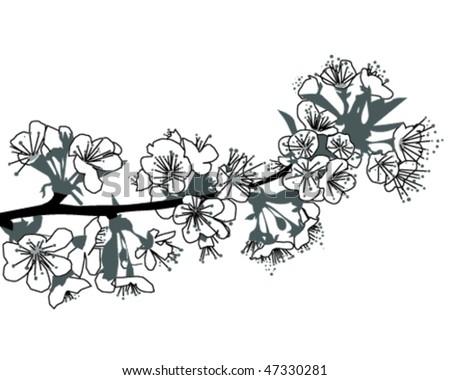 flower of cherry #47330281