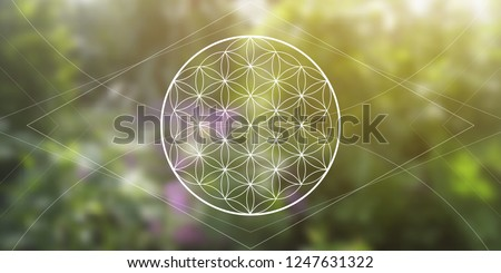 Flower of life sacred geometry illustration with intelocking circles and light dots in front of wide photographic background. Geometric trendy  graphic banner.
