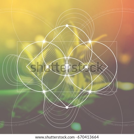Flower of life - the interlocking circles ancient symbol in front of blurred photorealistic natural background. Sacred geometry - mathematics, nature, and spirituality, the formula of nature.