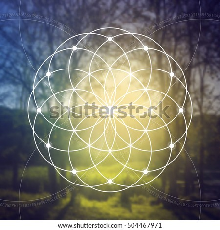 Flower of life - the interlocking circles ancient symbol in front of blurred photorealistic nature background. Sacred geometry - mathematics, nature, and spirituality in nature.