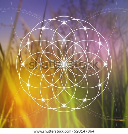 Flower of life - the interlocking circles ancient symbol on blurry photorealistic background.. Sacred geometry.