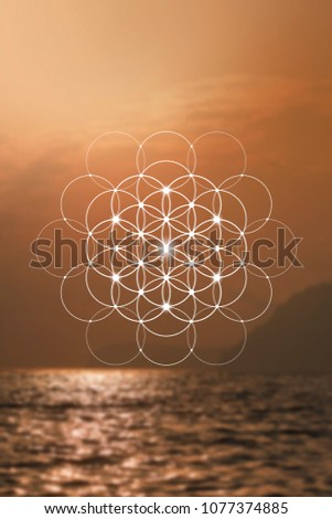 Flower of life - the interlocking circles ancient symbol. Sacred geometry. Mathematics, nature, and spirituality in the world. Self-knowledge in meditation.
