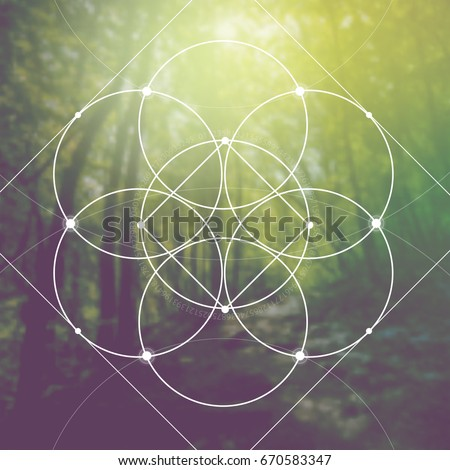 Flower of life - the interlocking circles and squares ancient sacred geometry symbol in front of blurred photorealistic natural background.