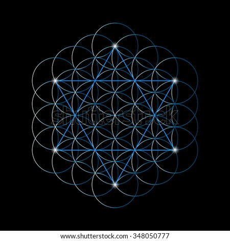 flower of life with a david