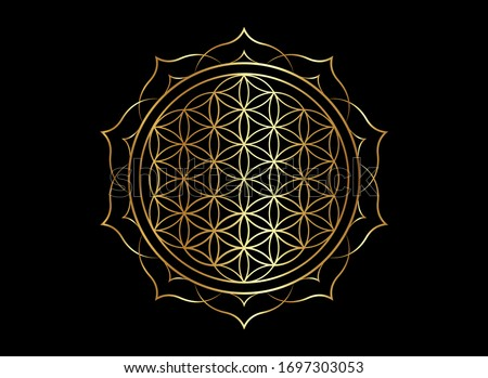 Flower of Life, Yantra Mandala in the lotus flower, Sacred Geometry. Bright golden symbol of harmony and balance. Mystical gold talisman, vector isolated on black background