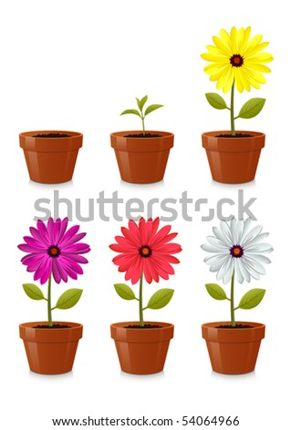 Flower pot, isolated on white background - stock vector