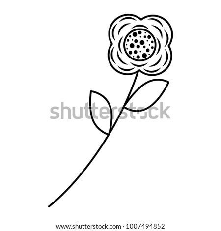 flower stem leaves nature petals decoration