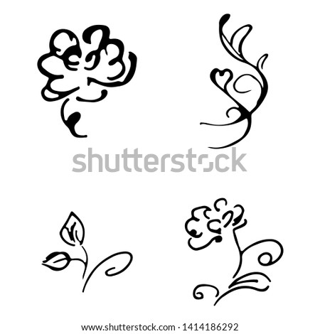 flowers and branches hand drawn