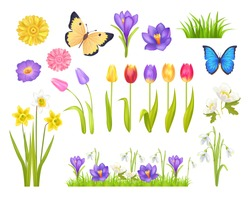 Flowers and butterflies collection, floral elements and decoration, grass and plants, spring time, vector illustration isolated on white background