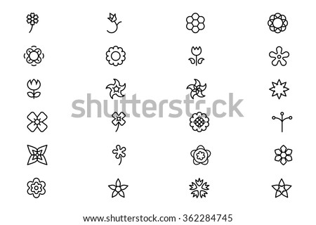 flowers and floral vector line