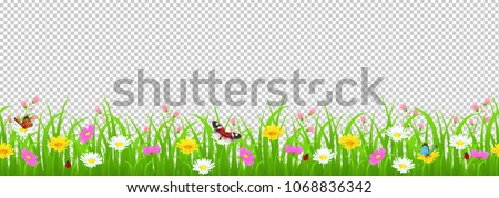 flowers and grass border