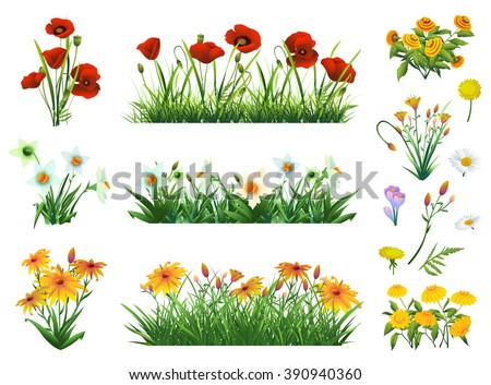 flowers and grass set of vector