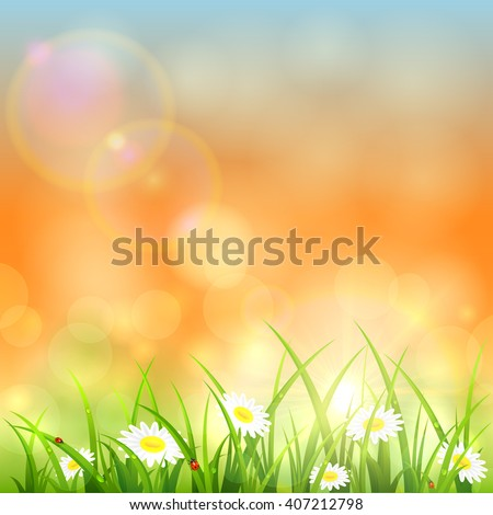flowers and grass with water
