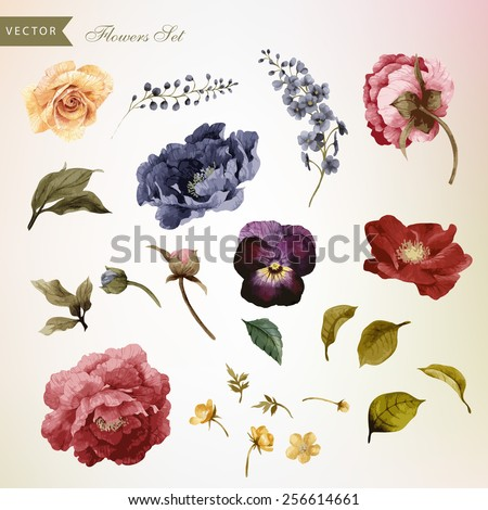 Flowers and leaves, watercolor, can be used as greeting card, invitation card for wedding, birthday and other holiday and  summer background. Vector illustration.