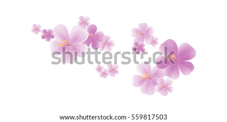 Flowers design. Flowers background. Flying light purple flowers isolated on white background. Apple-tree flowers. Cherry blossom. Vector
