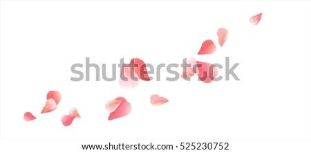 flowers design flowers petals