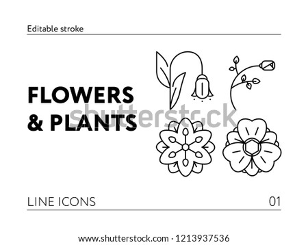 010cebbefad Flat Carnation Flower Free Vector - Download Free Vector Art