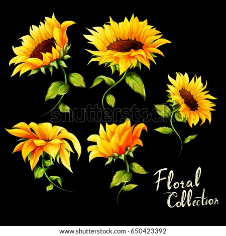 flowers floral collection set