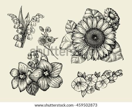 Flowers. Hand drawn sketch flower, sunflower, white lily, violet. Vector illustration