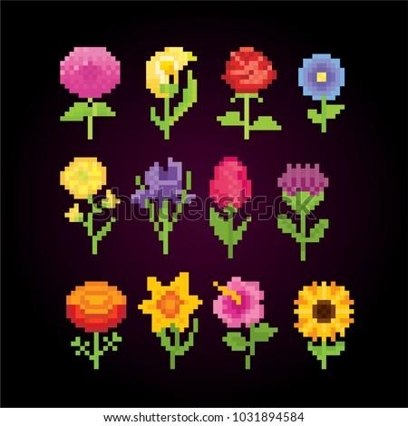 flowers icon set pixel art