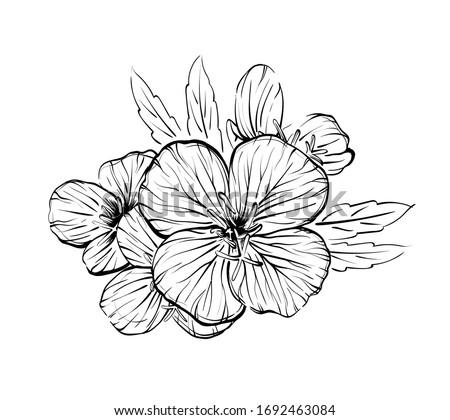flowers in line art style