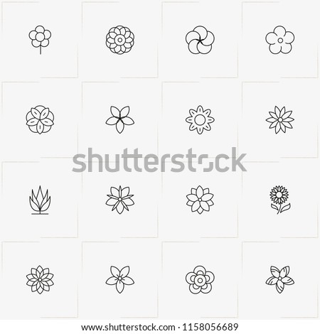 Flowers line icon set with flower and chamomile  #1158056689