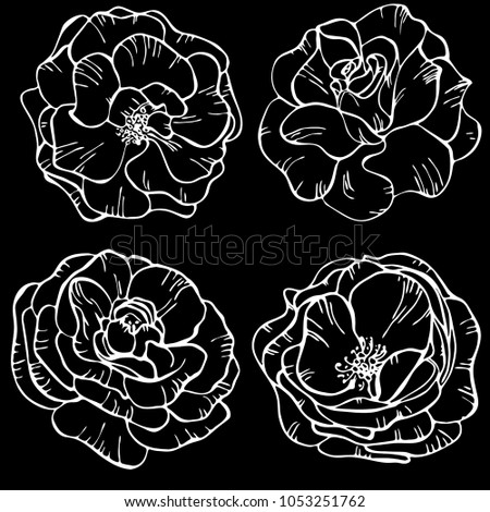 Rose flower vector background black and white download free vector black and white floral pattern flowers of roses on black background floral pattern vector illustration perfect for invitation mightylinksfo
