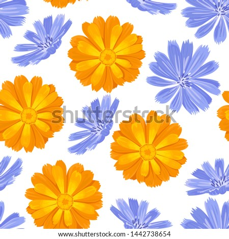 flowers orange and blue