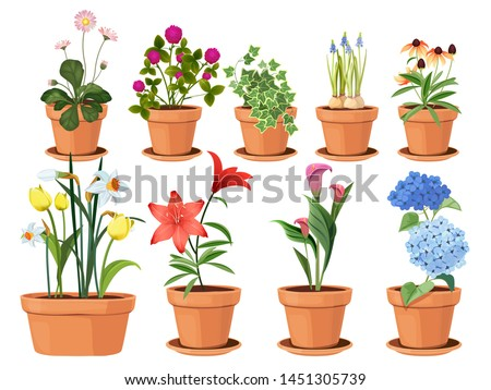 Flowers pot. Nature cartoon vector illustration of flowers and leaves beautiful collection. Blossom plant, botanical flowerpot 商業照片 ©