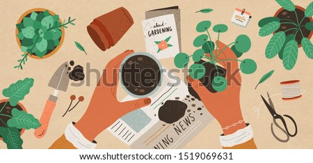 Flowers replanting flat vector top view illustration. Houseplant nursery and care. Indoor succulent, pilea cultivating. Floristry and gardening. Woman putting sprout in ceramic flowerpot with soil.