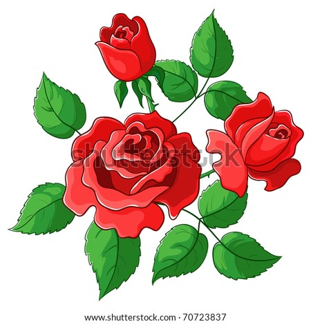 Flowers roses, vector, red buds and green leaves
