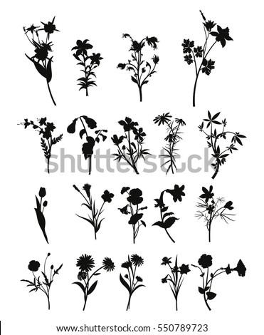 Flowers Silhouette Set