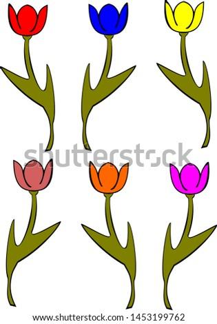 flowers  six dancing tulips in