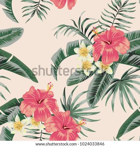 flowers vector plumeria and
