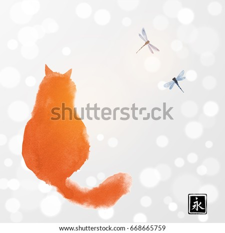 fluffy red cat watching two