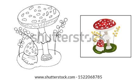 fly agaric vector coloring