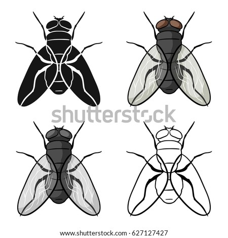 Fly icon in cartoon style isolated on white background. Insects symbol stock vector illustration.