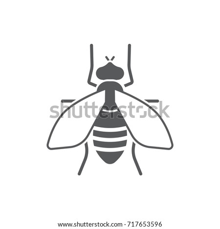 fly icon on the white background