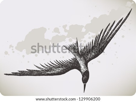 How to Draw a Bird Flying Simple Flying Bird Hand Drawing